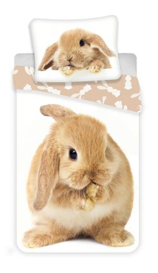 Obrázek z Povlečení fototisk Bunny brown 140x200, 70x90 cm