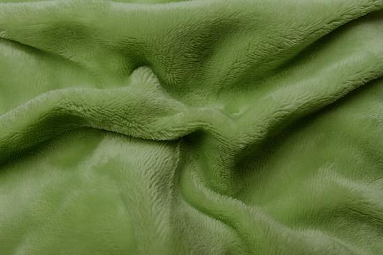 Obrázek z Prostěradlo mikroflanel kiwi (zelená) 90x200x20 cm