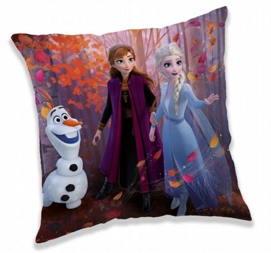 Obrázek z Polštářek Frozen 2 Forest 40x40 cm