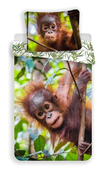 Obrázek z Povlečení fototisk Orangutan 02 140x200, 70x90 cm