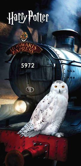 """Obrázek z Osuška Harry Potter """"Hedwig"""" 70x140 cm"""
