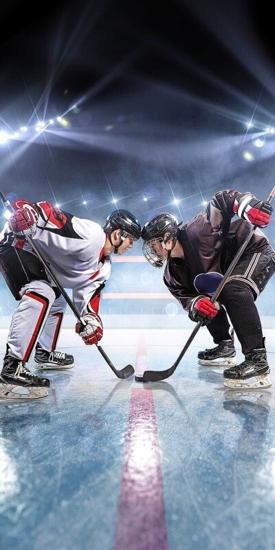 Obrázek z Osuška Lední hokej 70x140 cm