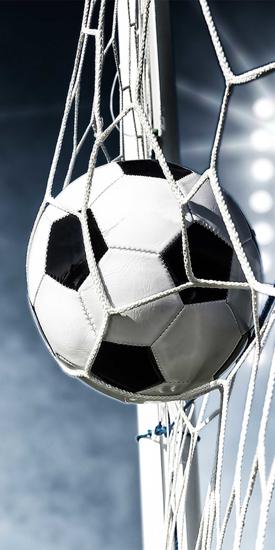 Obrázek z Osuška Football 02 70x140 cm